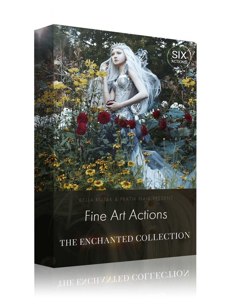 Box+Design+-+The+Enchanted+Collection.jpg
